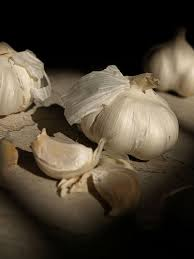 web garlic pic.jpg